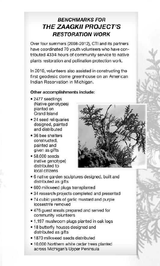 Zaagkii Booklet 2012 - pg 7