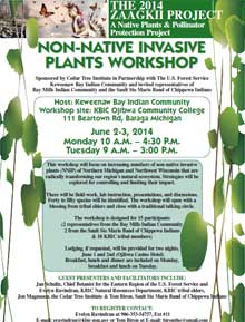 View Non-Native Invasive Plants Poster at full size